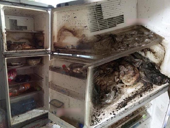 Bí kíp khử mùi tủ lạnh đơn giản mà hiệu quả